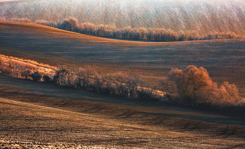 Dekoracja wnętrz Morawy jesień