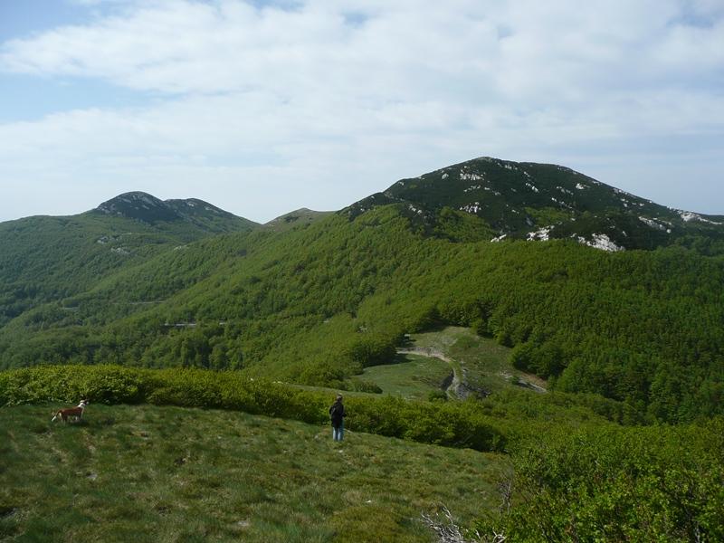 Orbazovac (1461 m)