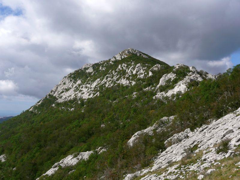 Milković vrh (1352 m)