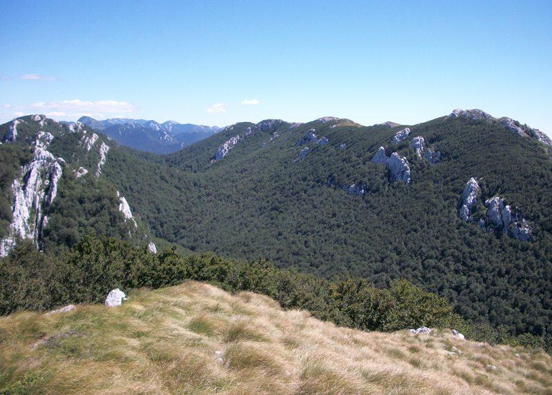 Šimine jele i Siljevača (1451 m)