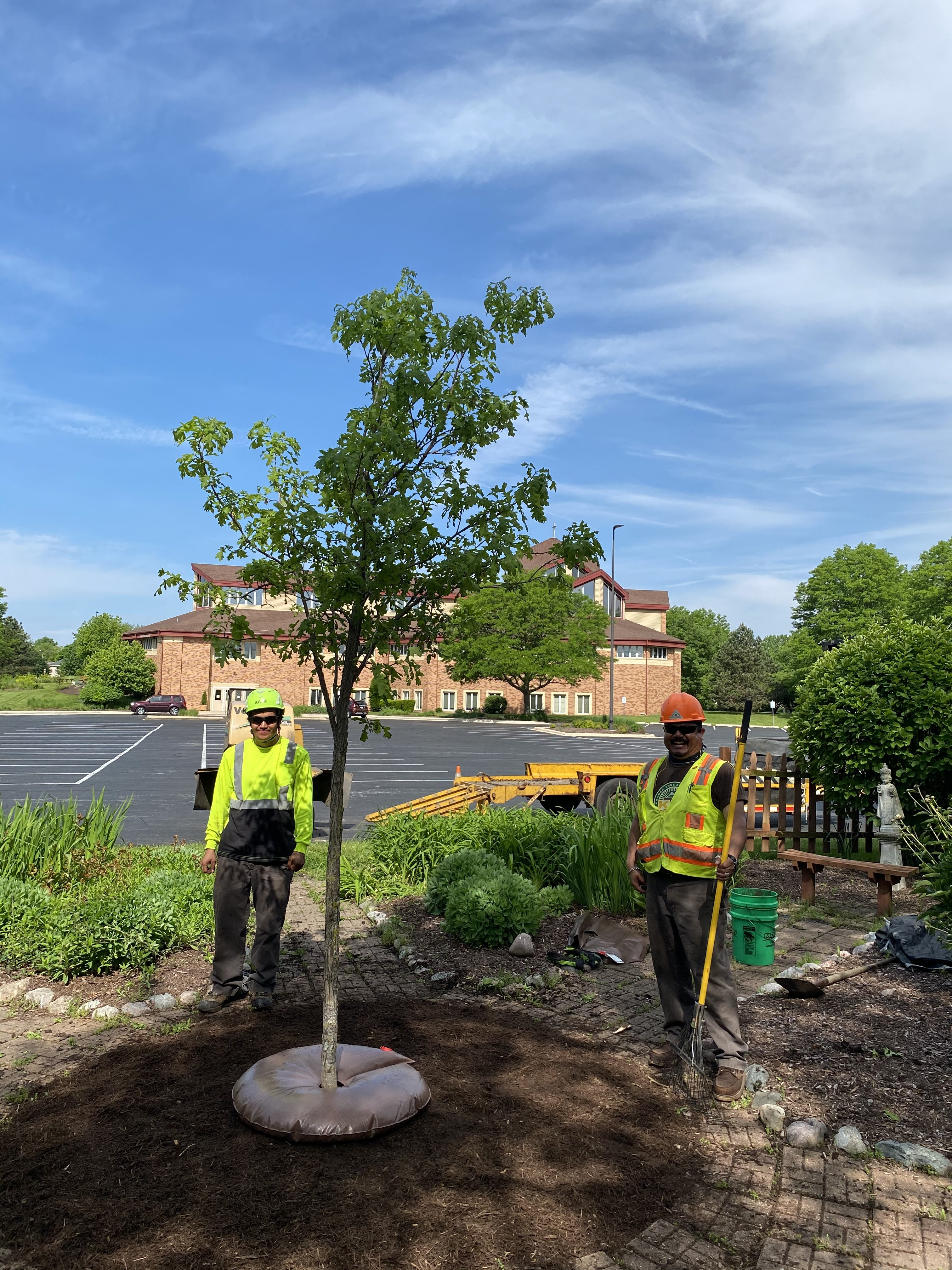 Tree Planting - Properly Watering Your Trees