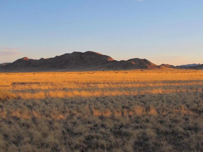 Nekonečná, vyprahlá Namibie.