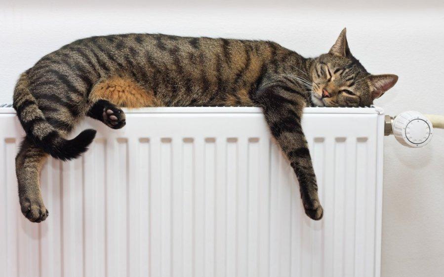 В Гродненской области начали включать отопление в соцобъектах