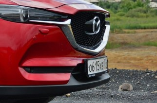 Номер не прошёл: реформу системы регистрации автомобилей отложили
