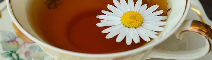 Ромашковый чай с мятой. Рецепт Красота и Баланс