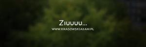 Ziuuuu… Idzie listopad…