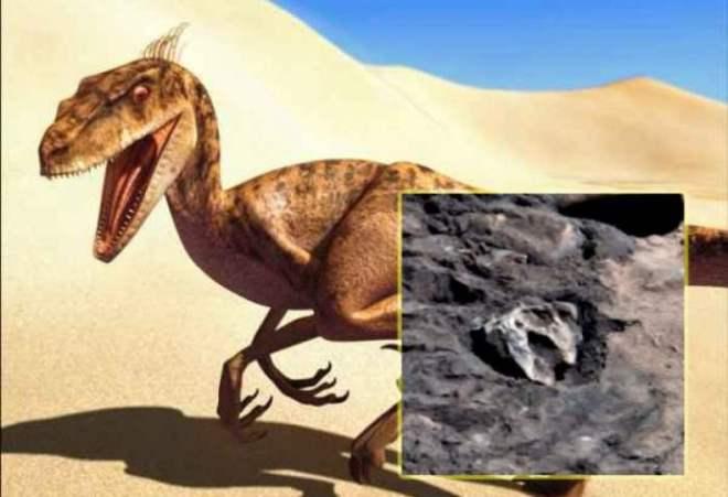 Уфолог нашел на фото Марса голову рептилии | Краткие новости
