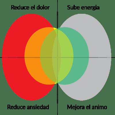 Diagrama de kratom