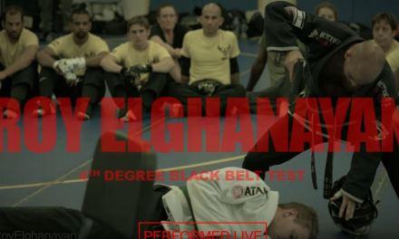 """The Bruce Lee of Krav Maga"" Roy Elghanayan's"