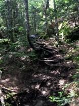 Grace Peak to South Dix