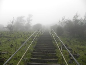 Stairs going up to Brahmagiri peak where tourists can enjoy beautiful view of the hills