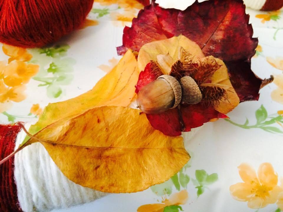 Listy můžete zpracovat bez ztráty živosti, barvy a tvaru
