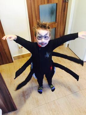 Pavouk v akci