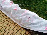Zombie útok na zahradě