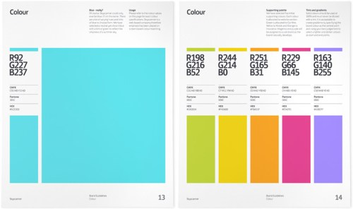 graphic standard manual 5