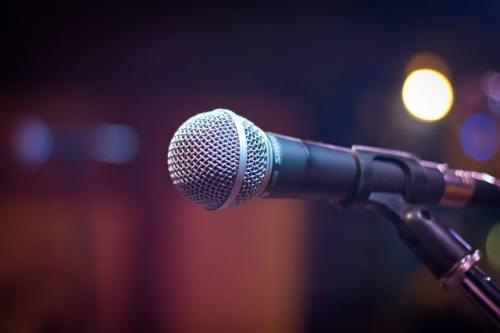 mic dynamic