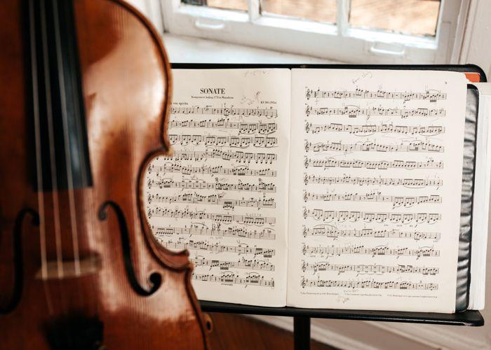biola alat musik ritmis