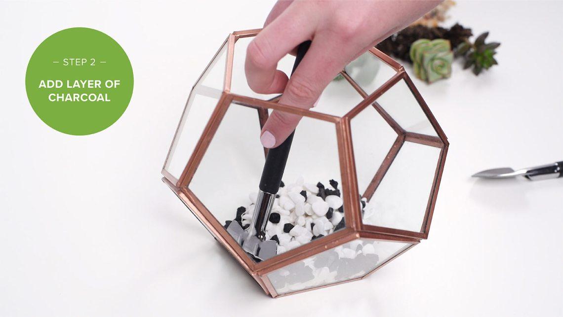 Langkah Kedua membuat diy terrarium