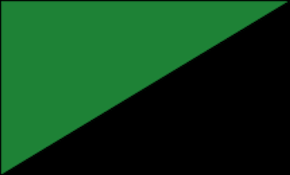 green_and_Black_flag.svg