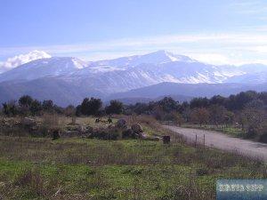 Lassithi Plateau