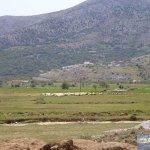 Schafe Weide Lassithi-Hochebene