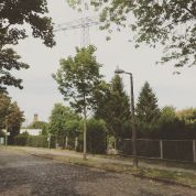 Lost in Lichtenberg