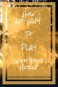play with your horse