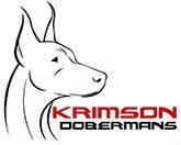 Krimson Dobermans