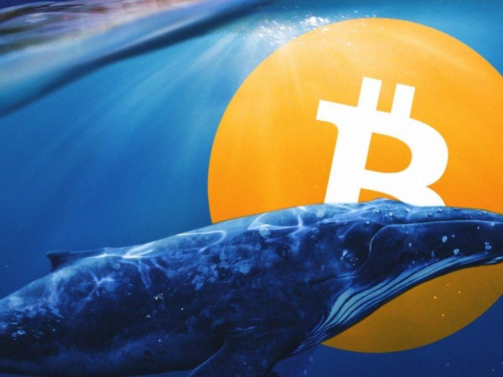 En Zengin Bitcoin Balinalarından Biri Onmilyonları Hareket Ettirdi! Dump mı Yapacak?