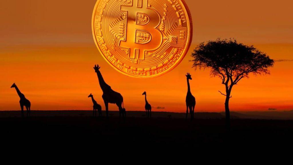 Bitcoin'in NVT Oranı Tarihte İlk Kez 10.000 Doları Aştı! İşte Olabilecekler...
