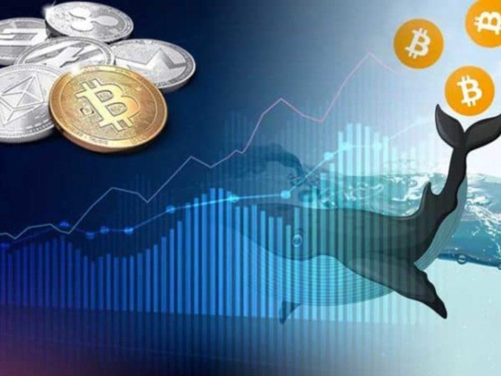Devasa Miktarda Ripple Coinbase'ye Boşaltıldı! Bitcoin Balinaları Harekete Geçti
