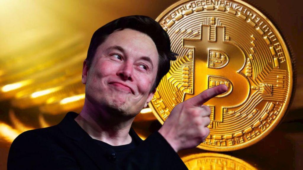 Büyük İddia: Elon Musk Gizemli Bir Bitcoin Balinası! İşte Gerekçeleri