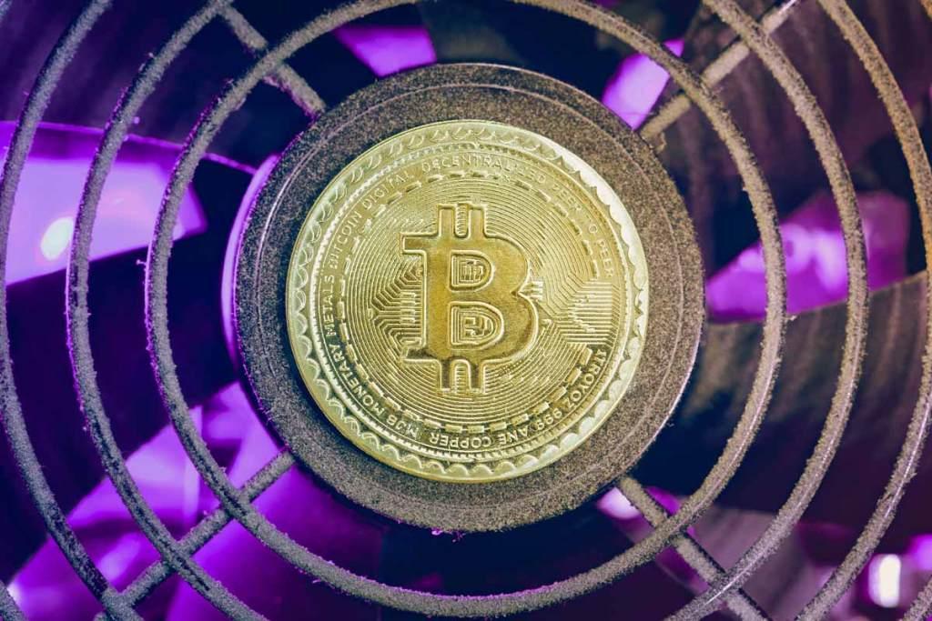 Ünlü Danışmanlık Şirketinin CEO'su Bitcoin'lerinin Yüzde 50'sini Sattı!