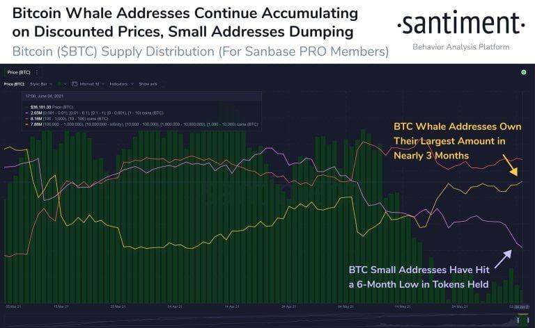 Perde Arkasındaki Gerçekler: Bitcoin ve Ethereum Balinaları Şimdi Ne Yapıyor?