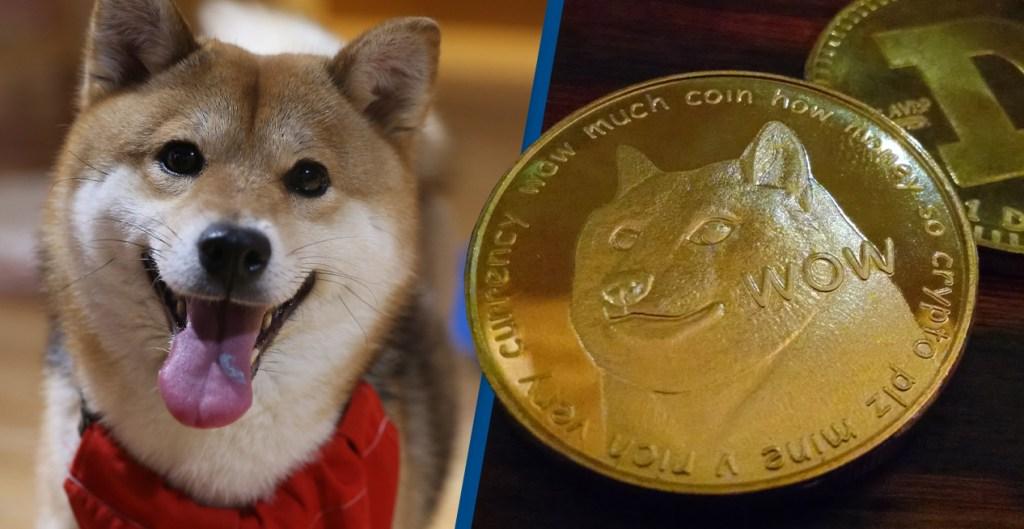ABD'li Politikacı Bu 3 Meme Coin'e Dikkat Çekti: Artık Sahipsiniz!