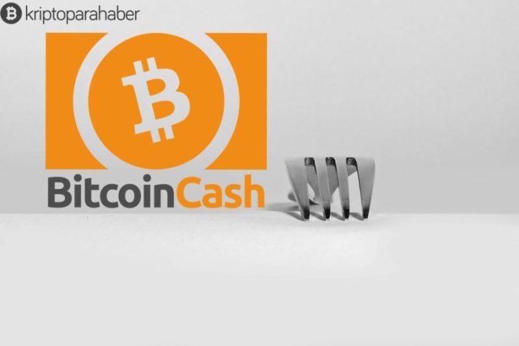 Bitcoin Cash düğümlerinin yüzde 13'ü hala çalışmıyor
