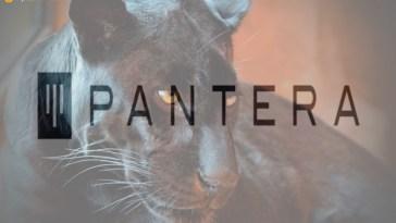 Pantera Capital, üçüncü kripto girişim fonu için 71 milyon dolar topluyor