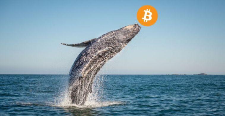 109.234.33 Bitcoin (BTC) Binance'den bilinmeyen bir cüzdana taşındı