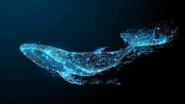 Whale Alert: Yeni basılan 19 Milyon USDC hazineden bilinmeyen cüzdana taşındı