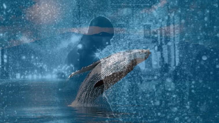 Büyük Bitcoin balinası Coinbase
