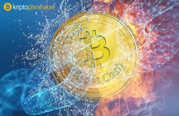 Bitcoin tahminleri tutan analistten korkunç altcoin tahmini