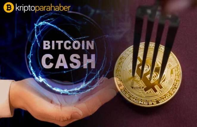 Bitcoin Cash (BCH) fiyatı, ağır vuruyor