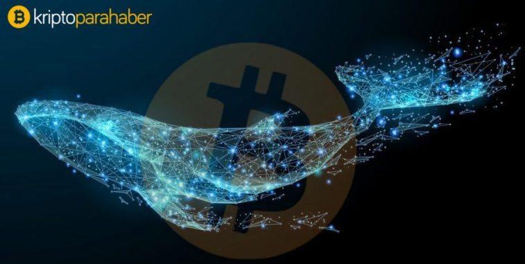 Bitcoin 11 bin'i aşınca, balinalar 38.881 BTC'yi taşıdılar