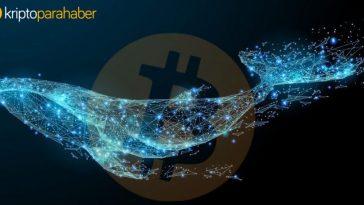 BTC fiyatının 5.500 doların üzerine çıktığını gören Bitcoin balinaları oyuna hazırlanıyor