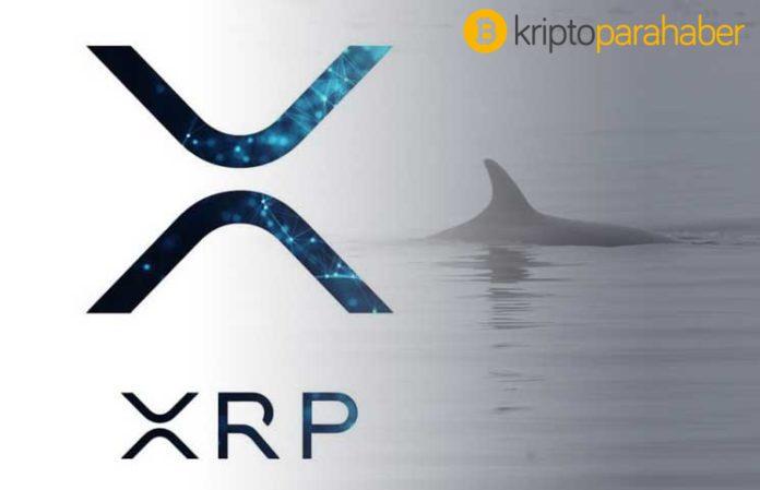 Ripple, bilinmeyen cüzdanlara 80 milyon dolarlık XRP gönderdi.