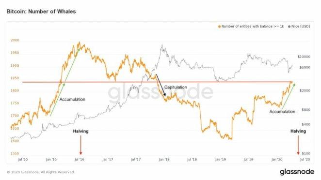 Bitcoin balinaları son iki yılın rekorunu kırdı! Fiyat yükselecek mi? 3