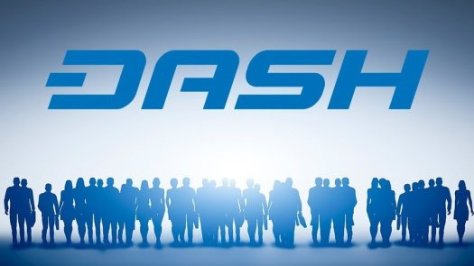Dash стремительно растет