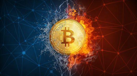 Мнение: биткоин всегда будет главной криптовалютой