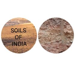 soils-type-india