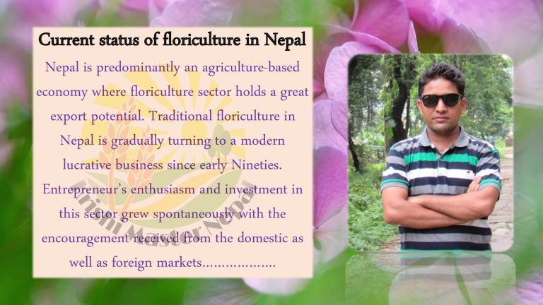 Current status of Floriculture in Nepal